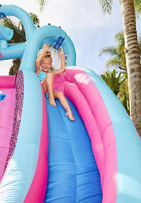 bouncer 2 Slide with Blower bag wall