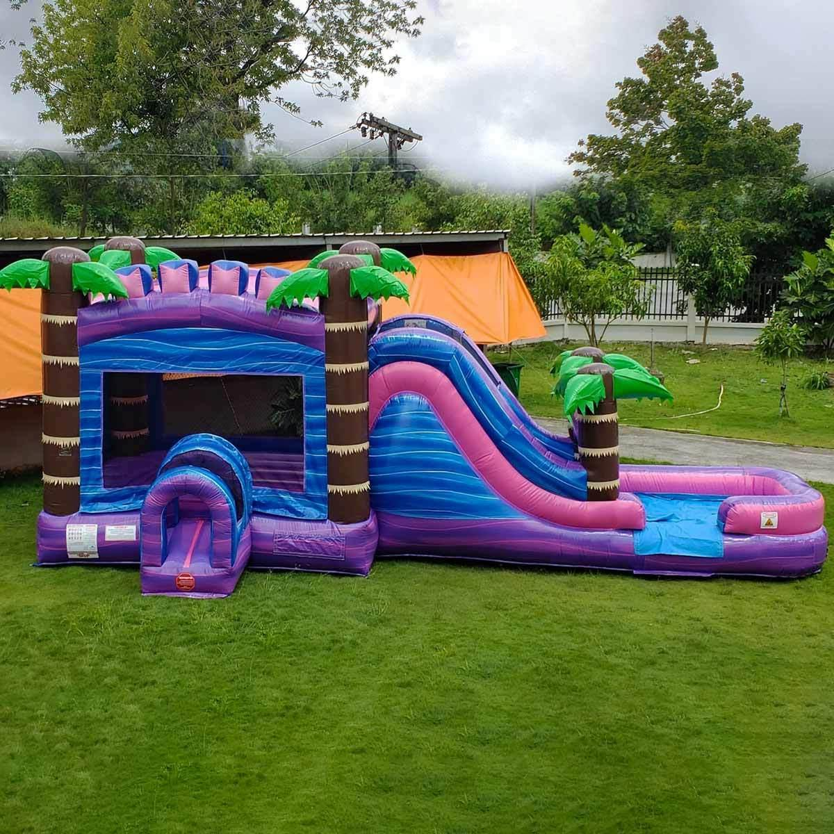 Commercial Inflatable Slide Wet/Dry