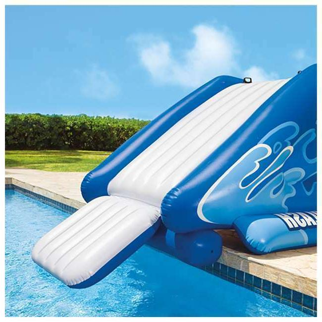 Giant Inflatable Slide Pool Fun